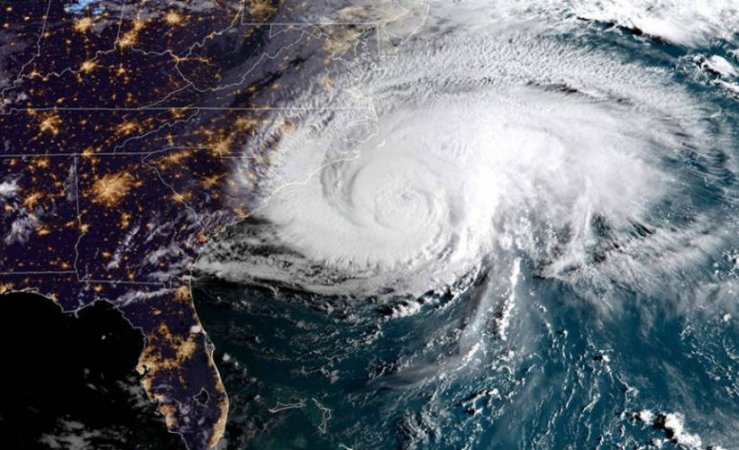 How to Prepare for Hurricane Season When You Have a Pet