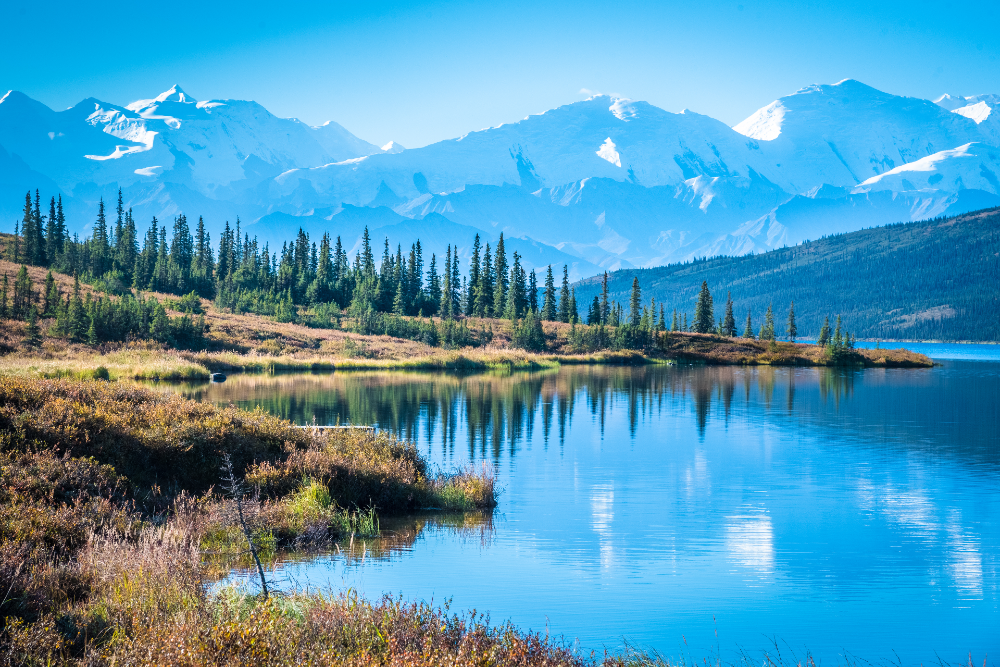 Tour Alaska for Your Next Vacation Destination